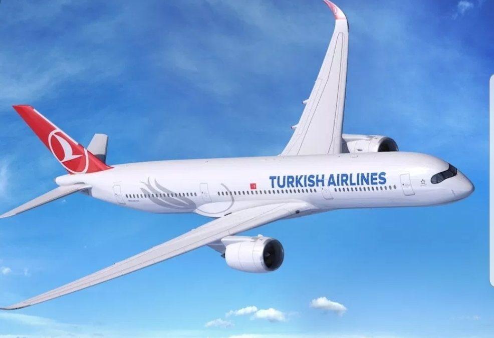 Plus de 30 blessés à bord d'un avion de Turkish Airlines