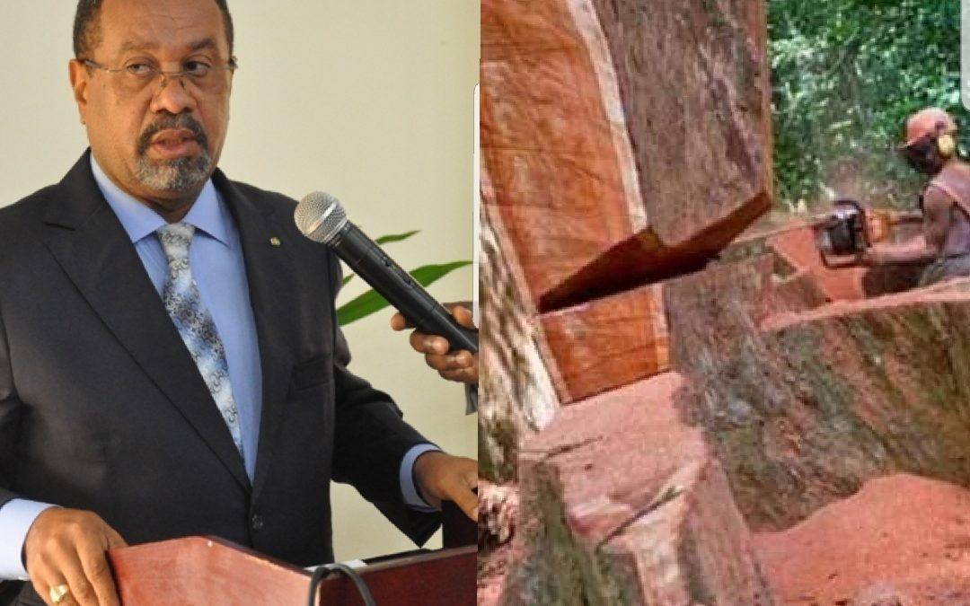 Gabon: Guy-Bertrand Mapangou limogé finalement sur la base de fausses allégations
