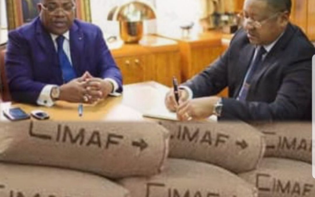 Gabon:  Nkoghe Bekale et Ogandaga veulent instaurer une mafia cimentière