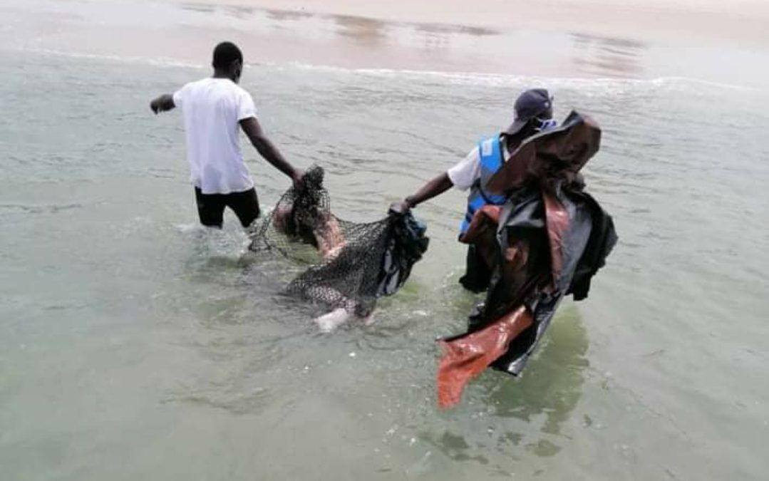 Gabon: découverte du corps d'un garçon sacrifié à La Pointe-Denis.