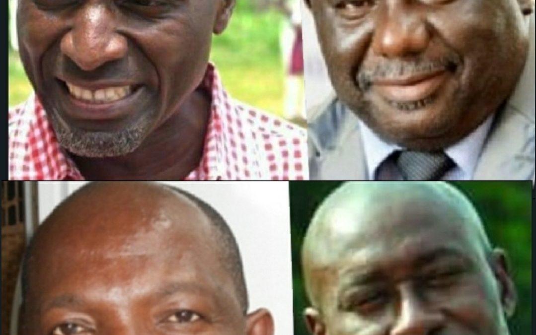 Gabon: Libama, Yama, Mpaga et Malanda enfoncent Nourredin Bongo à la DGR